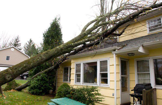 Comprendre la franchise d'assurance ouragan