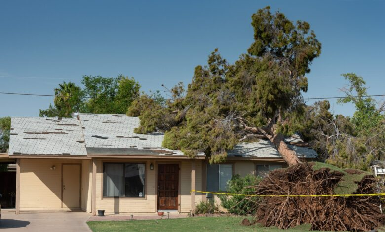 L'assurance habitation couvre-t-elle le remplacement du toit?