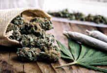 Photo of Les marchés locaux du logement connaissent une «renaissance économique» grâce au cannabis