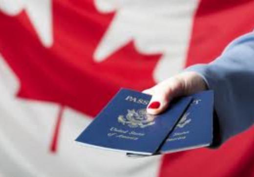 Photo of Les courtiers en prestations d'immigration en plein essor au Canada