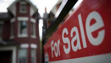 Photo of Les derniers chiffres montrent que le marché immobilier de Hamilton se réchauffe