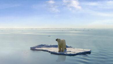 Photo of Le secteur immobilier doit travailler avec les assureurs sur le changement climatique