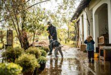 Photo of Les 8 meilleures compagnies d'assurance contre les inondations de 2021