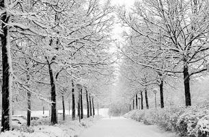 Photo of Guide du courtier sur les conditions hivernales et ses effets sur les affaires